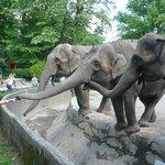 Tierpark Carl Hagenbeck