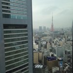 View from Harmony Restaurant - Tokyo Tower