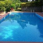 Zwembad boven in de tuin