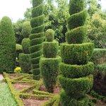 Jardim Botanica,