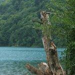 Spokojna toń jeziora