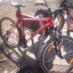 Hired Bikes