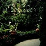 สวนในโรงแรม