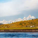 View of the Tetons from the ranch.
