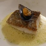Fish with braised fennel & a mussel and saffron bouillon