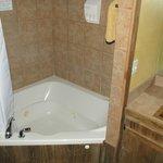 Bollinger Cabin large bath