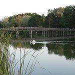 Lac proche hôtel