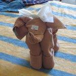I just love my elephant