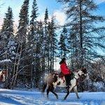 randonnée hivernale à cheval