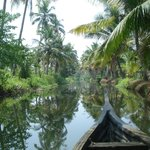 Backwaters by traditional, open country boat
