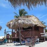 Beach Bar Hut