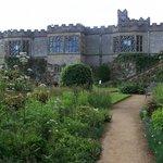 Garden and facade