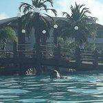 el puentecito que hay en las piscinas