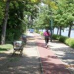 running trail w cart in background