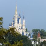 Magic Kingdom view (zoomed)