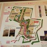 Sakura map at the Prince complex