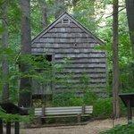 Information cottage named 'shelter'