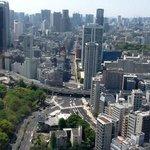 Tokyo do alto