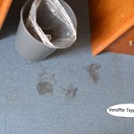 Versiffter Teppichboden