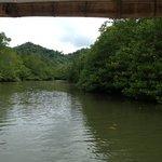 Jungle cruise to Majika