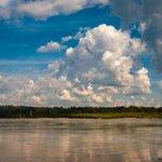Le calme du rio Napo