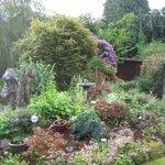 ...und der Garten