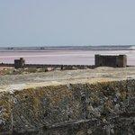 au loin, le salin d'Aigues-Mortes