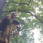 7 year old trying the zip wire