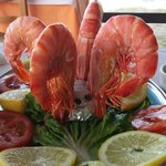 You should try the shrimps