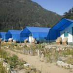 The tents at Kinner Camps