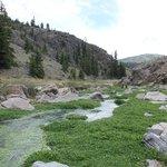Creek in der Näge