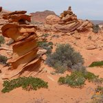 S Coyote Buttes