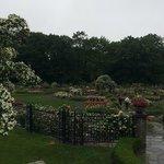 Rose Garden overview