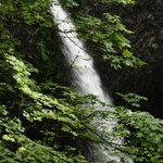 Oneonta Gorge--Triple Falls
