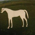 the chalk horse