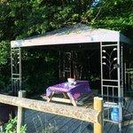 Private BBQ area