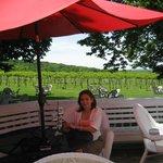 Next to the Vineyard