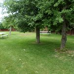 Our secluded Picnic Area