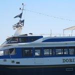 Dorimar II