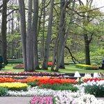 حديقةكيوكينهوف