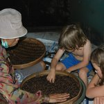 Hands on coffee excursion