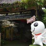 @ Penang Butterfly Farm