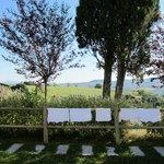 Вид из номера на тосканские холмы