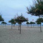 Spiaggia unica! Le tamerici a Valverde di Cesenatico