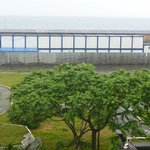 'Ocean' view of containers and ovegrown garden