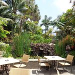 H Tigaiga -  breakfast terrace