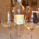 Lugana vino tipico del Lago di Garda