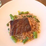 Salmon with farro grain & greens.