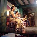 Vista lateral del cuadro flamenco