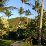 walking around caneel resort